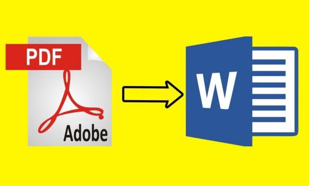 Hal-hal Yang Perlu Dipertimbangkan Saat Merubah PDF ke Word: